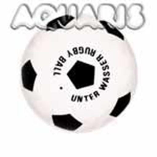 WBL Unterwasser Rugbyball